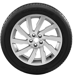 NT421Q tire picture - sidewall view